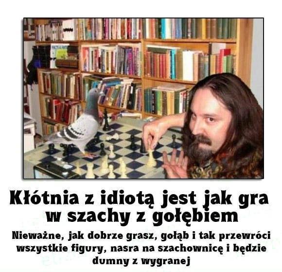 klotnia_z_idiota_jest_jak_szachy_z_golebiem_792